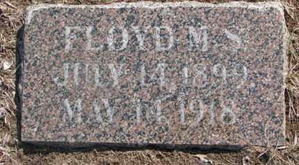 JOHNSON, FLOYD M.S. - Dixon County, Nebraska | FLOYD M.S. JOHNSON - Nebraska Gravestone Photos