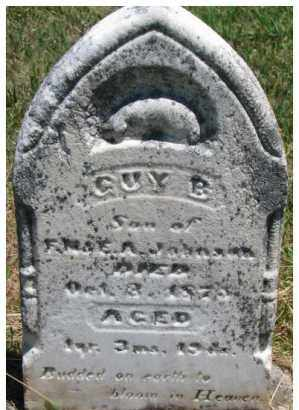 JOHNSON, GUY B. - Dixon County, Nebraska | GUY B. JOHNSON - Nebraska Gravestone Photos