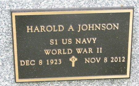 JOHNSON, HAROLD A. (MILITARY) - Dixon County, Nebraska | HAROLD A. (MILITARY) JOHNSON - Nebraska Gravestone Photos