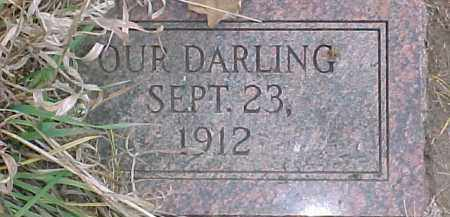 JOHNSON, INFANT - Dixon County, Nebraska | INFANT JOHNSON - Nebraska Gravestone Photos
