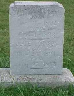JOHNSON, JULIE - Dixon County, Nebraska | JULIE JOHNSON - Nebraska Gravestone Photos