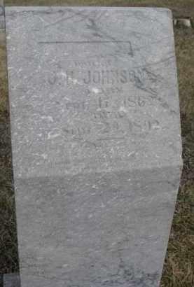 JOHNSON, LILLYAN N. - Dixon County, Nebraska | LILLYAN N. JOHNSON - Nebraska Gravestone Photos
