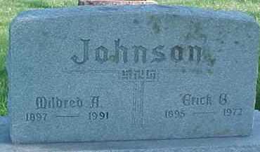 JOHNSON, ERICK G. - Dixon County, Nebraska | ERICK G. JOHNSON - Nebraska Gravestone Photos