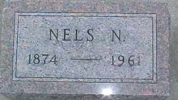 JOHNSON, NELS N. - Dixon County, Nebraska   NELS N. JOHNSON - Nebraska Gravestone Photos