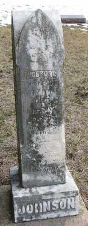 JOHNSON, THEODORE - Dixon County, Nebraska | THEODORE JOHNSON - Nebraska Gravestone Photos