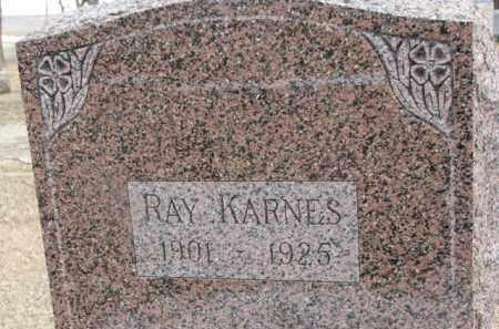 KARNES, RAY - Dixon County, Nebraska | RAY KARNES - Nebraska Gravestone Photos