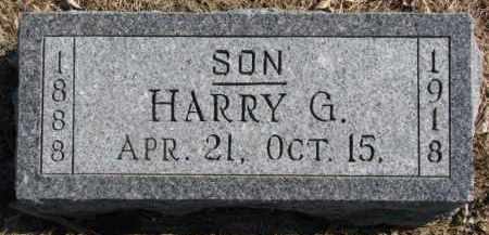 KINGSTON, HARRY G. - Dixon County, Nebraska | HARRY G. KINGSTON - Nebraska Gravestone Photos