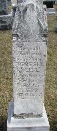 KNEIFL, THERESIA - Dixon County, Nebraska | THERESIA KNEIFL - Nebraska Gravestone Photos