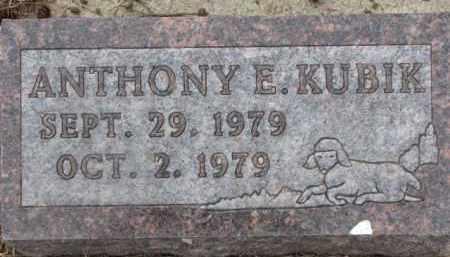 KUBIK, ANTHONY E. - Dixon County, Nebraska | ANTHONY E. KUBIK - Nebraska Gravestone Photos