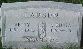 LARSON, ANDERS GUSTAF - Dixon County, Nebraska | ANDERS GUSTAF LARSON - Nebraska Gravestone Photos
