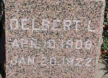 LARSON, DELBERT - Dixon County, Nebraska   DELBERT LARSON - Nebraska Gravestone Photos