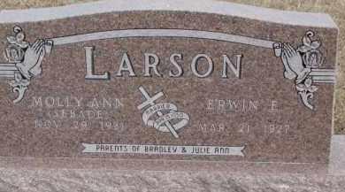 SEBADE LARSON, MOLLY ANN - Dixon County, Nebraska | MOLLY ANN SEBADE LARSON - Nebraska Gravestone Photos