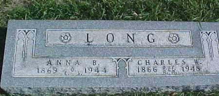 LONG, CHARLES W. - Dixon County, Nebraska | CHARLES W. LONG - Nebraska Gravestone Photos
