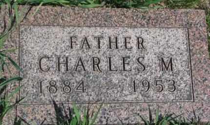 LOWE, CHARLES M. - Dixon County, Nebraska | CHARLES M. LOWE - Nebraska Gravestone Photos