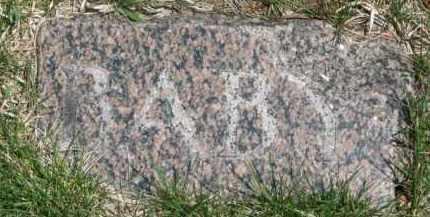 LOWE, INFANT - Dixon County, Nebraska | INFANT LOWE - Nebraska Gravestone Photos