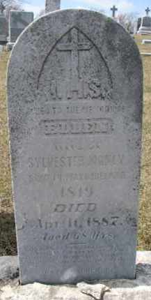 MANLEY, ELLEN - Dixon County, Nebraska   ELLEN MANLEY - Nebraska Gravestone Photos