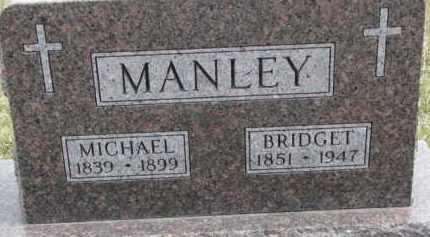 MANLEY, MICHAEL - Dixon County, Nebraska | MICHAEL MANLEY - Nebraska Gravestone Photos