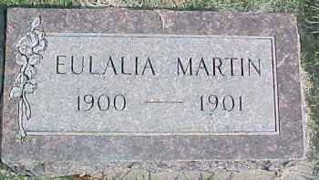 MARTIN, EULALIA - Dixon County, Nebraska | EULALIA MARTIN - Nebraska Gravestone Photos
