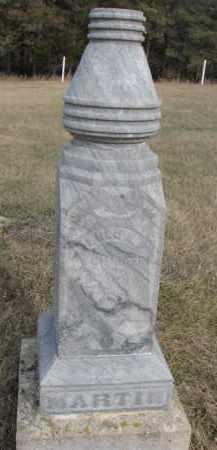 MARTIN, LULU N. - Dixon County, Nebraska | LULU N. MARTIN - Nebraska Gravestone Photos