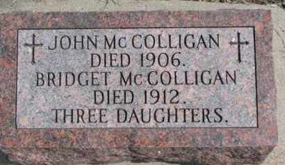 MCCOLLIGAN, BRIDGET - Dixon County, Nebraska | BRIDGET MCCOLLIGAN - Nebraska Gravestone Photos