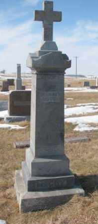 MCCOY, MICHAEL - Dixon County, Nebraska | MICHAEL MCCOY - Nebraska Gravestone Photos