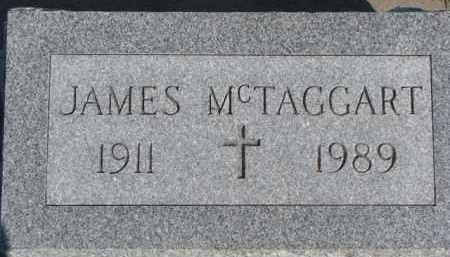 MCTAGGART, JAMES - Dixon County, Nebraska | JAMES MCTAGGART - Nebraska Gravestone Photos