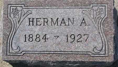 MOSEMAN, HERMAN A. - Dixon County, Nebraska   HERMAN A. MOSEMAN - Nebraska Gravestone Photos