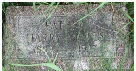 MOTTS, HARRY - Dixon County, Nebraska   HARRY MOTTS - Nebraska Gravestone Photos