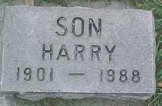 MUNSON, HARRY - Dixon County, Nebraska | HARRY MUNSON - Nebraska Gravestone Photos