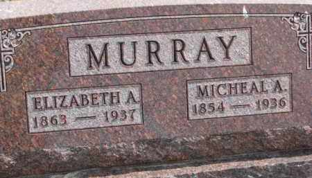 MURRAY, MICHEAL A. - Dixon County, Nebraska | MICHEAL A. MURRAY - Nebraska Gravestone Photos
