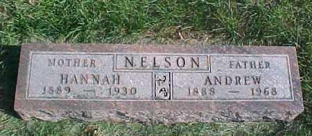 NELSON, HANNAH - Dixon County, Nebraska | HANNAH NELSON - Nebraska Gravestone Photos