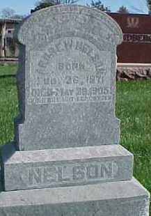 NELSON, ANDREW W. - Dixon County, Nebraska   ANDREW W. NELSON - Nebraska Gravestone Photos