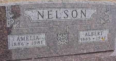 NELSON, AMELIA - Dixon County, Nebraska | AMELIA NELSON - Nebraska Gravestone Photos