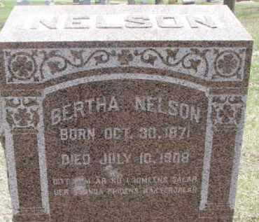 NELSON, BERTHA - Dixon County, Nebraska | BERTHA NELSON - Nebraska Gravestone Photos
