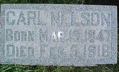 NELSON, CARL - Dixon County, Nebraska | CARL NELSON - Nebraska Gravestone Photos
