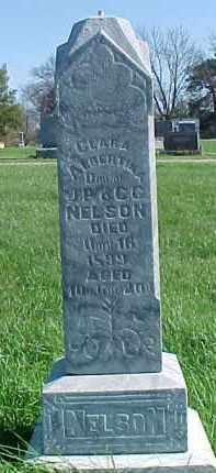NELSON, CLARA ALBERTINA - Dixon County, Nebraska   CLARA ALBERTINA NELSON - Nebraska Gravestone Photos