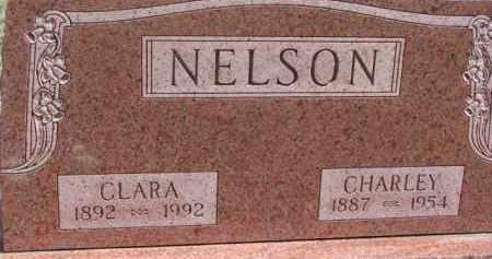 NELSON, CHARLEY - Dixon County, Nebraska | CHARLEY NELSON - Nebraska Gravestone Photos