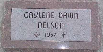 NELSON, GAYLENE DAWN - Dixon County, Nebraska | GAYLENE DAWN NELSON - Nebraska Gravestone Photos