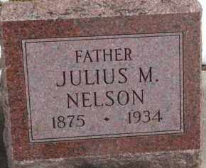 NELSON, JULIUS M. - Dixon County, Nebraska | JULIUS M. NELSON - Nebraska Gravestone Photos