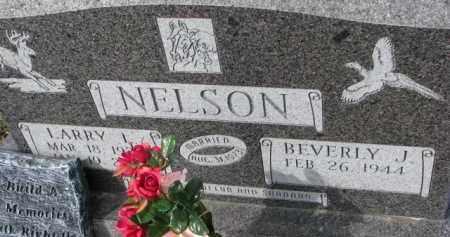 NELSON, LARRY L. - Dixon County, Nebraska | LARRY L. NELSON - Nebraska Gravestone Photos