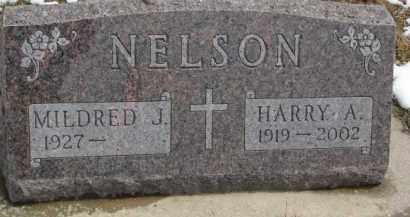 NELSON, HARRY A. - Dixon County, Nebraska | HARRY A. NELSON - Nebraska Gravestone Photos