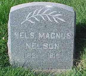 NELSON, NELS MAGNUS - Dixon County, Nebraska | NELS MAGNUS NELSON - Nebraska Gravestone Photos