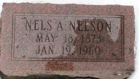 NELSON, NELS A. - Dixon County, Nebraska | NELS A. NELSON - Nebraska Gravestone Photos