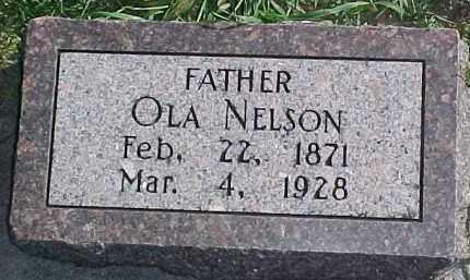 NELSON, OLA - Dixon County, Nebraska | OLA NELSON - Nebraska Gravestone Photos