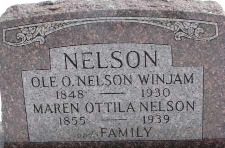NELSON, MAREN OTTILA - Dixon County, Nebraska | MAREN OTTILA NELSON - Nebraska Gravestone Photos
