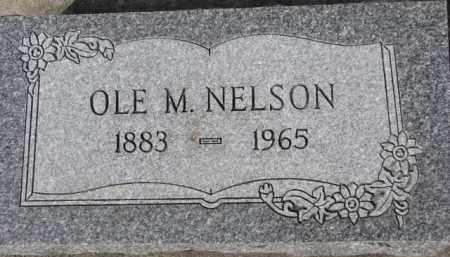 NELSON, OLE M. - Dixon County, Nebraska | OLE M. NELSON - Nebraska Gravestone Photos