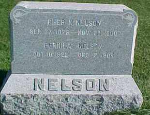 NELSON, PEHR N. - Dixon County, Nebraska | PEHR N. NELSON - Nebraska Gravestone Photos