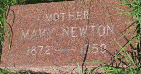 NEWTON, MARY - Dixon County, Nebraska | MARY NEWTON - Nebraska Gravestone Photos