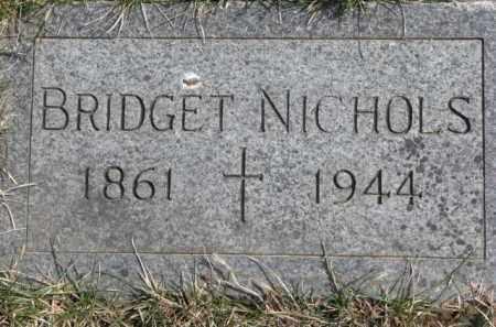 NICHOLS, BRIDGET - Dixon County, Nebraska | BRIDGET NICHOLS - Nebraska Gravestone Photos