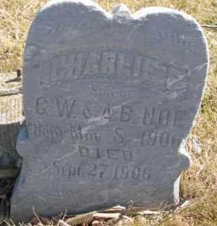 NOE, CHARLIE F. - Dixon County, Nebraska   CHARLIE F. NOE - Nebraska Gravestone Photos